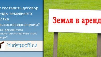 Photo of Аренда земельного участка сельхозназначения: особенности оформления сделки