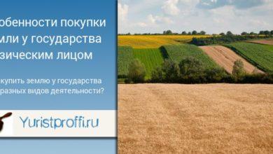 Photo of Как купить землю у государства: особенности процесса для физических и юридических лиц